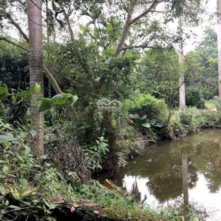 6446M2, Có 200 Đất Ở Tại Thị Trấn Lương Sơn. Đường Xe Tải, Giá Chỉ 1, 5 Triệu/M- Ảnh 4