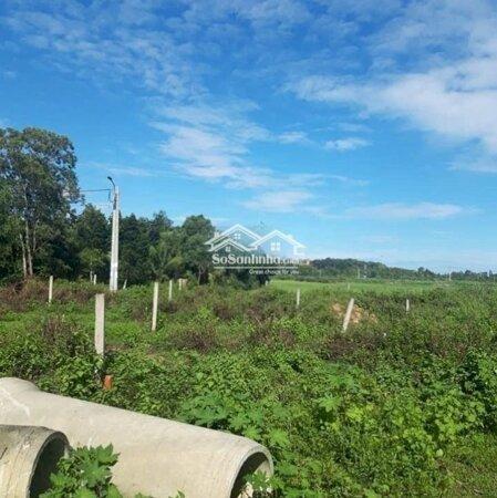 Cần Bán Đất Hẻm Ấp Long Bình, Đường Bạch Đằng- Ảnh 2