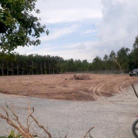 Bán đất tại Đường DH410, Tân Uyên, Bình Dương diện tích 883m2 giá 2,914 Triệu- Ảnh 1