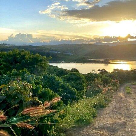 Đất View Hồ Đại Ninh - Đức Trọng - Lâm Đồng 5000M Chỉ 2.1 Tỷ Calo 0911024616- Ảnh 1