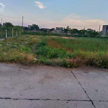 Bán lô đất Xóm 9 - Khánh Hồng -Yên Khánh -Ninh Bình .- Ảnh 4