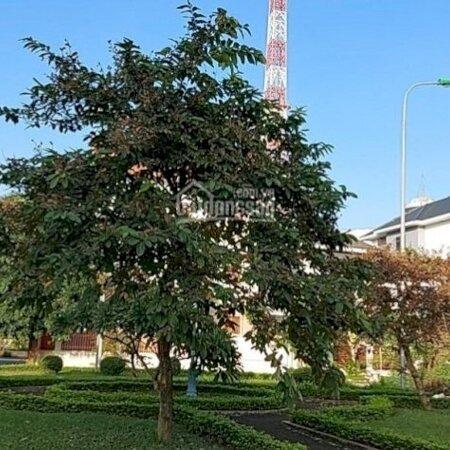 Bán Đất Biệt Thự Lo Góc Đường Trần Bích Hoành Khu Đô Thị Hòa Vượng Thành Phố Nam Định- Ảnh 2