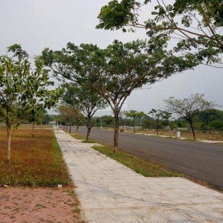 Bán Đất Khu Vực Sân Bay Quốc Tế Long Thành 601 Triệu- Ảnh 2