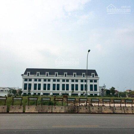 Đất Kinh Doanh Thôn Cổ Dương Xã Tiên Dương Đông Anh Hà Nội- Ảnh 3