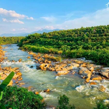 Đất biệt thự vườn nghỉ dưỡng 510m2 giá 650tr, view sông, tặng vườn cây ăn trái và thiết kế vườn.- Ảnh 6