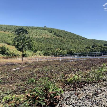 Đất biệt thự vườn nghỉ dưỡng 510m2 giá 650tr, view sông, tặng vườn cây ăn trái và thiết kế vườn.- Ảnh 2