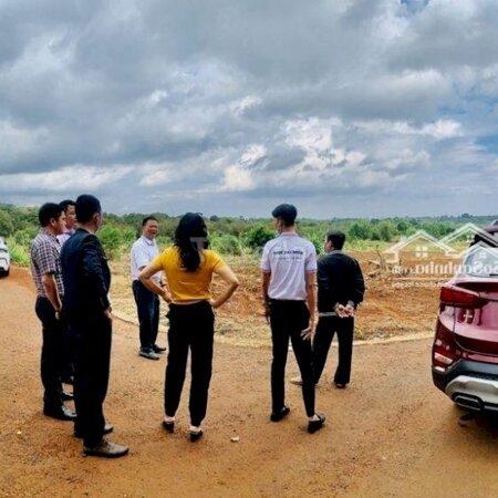 Đất Sào Bàu Cạn Giá Rẻ Ngay Sân Bay Long Thành- Ảnh 2