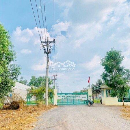 Đất Sào Bàu Cạn Giá Rẻ Ngay Sân Bay Long Thành- Ảnh 5