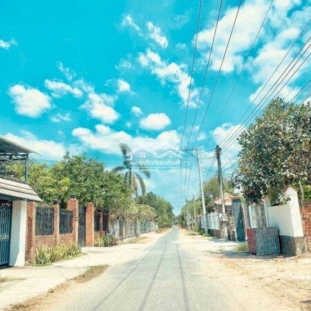 Đất Sào Bàu Cạn Giá Rẻ Ngay Sân Bay Long Thành- Ảnh 4