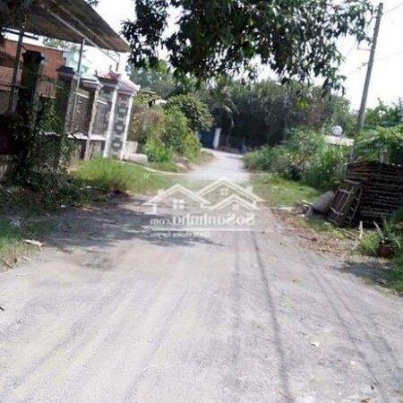 Đất Cu Chi 218M Tan Thanh Dong- Ảnh 7