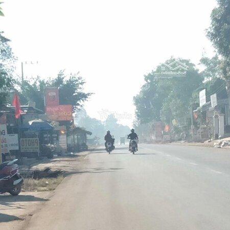 Bán Gấp Lô Đất Đường Dh Tân Phước 1023M2/ 380 Triệu- Ảnh 1