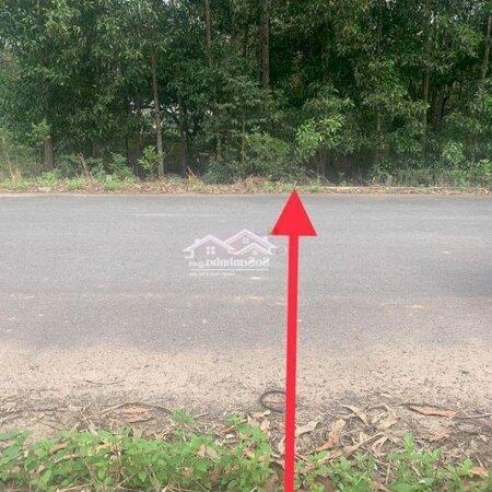 Bán Đất Phường Tam Phước Thành Phố Biên Hòa- Ảnh 2