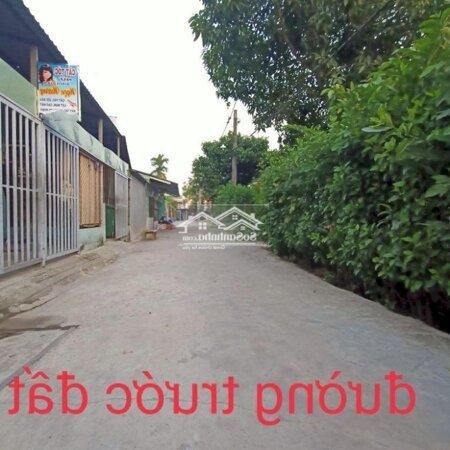 Đất Đầu Tư 49 Triệu/M Hẻm Thông 6M Đường 11 Trường Thọ- Ảnh 3