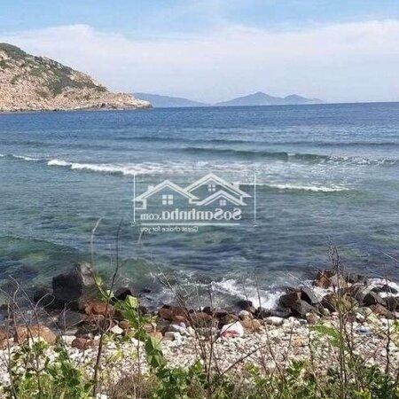 6000M View Biển Ninh Vân Bay Quy Hoạch Dịch Vụ- Ảnh 3