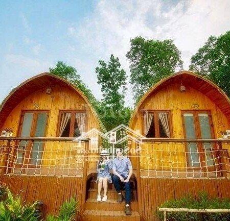 Đất Nền Nghĩ Dưỡng Bảo Lộc Xây Homesaty, Bungalow- Ảnh 7