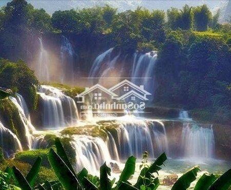 Đất Nền Nghĩ Dưỡng Bảo Lộc Xây Homesaty, Bungalow- Ảnh 11