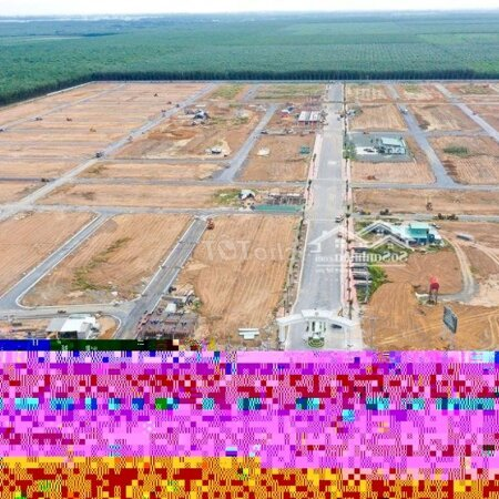 Đất Nền Sân Bay Long Thành,Vị Trí Vàng, Giá Đầu Tư- Ảnh 1