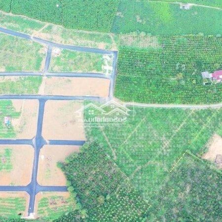 Đất Bảo Lộc Sổ Sẵn Chỉ 239 Triệu Sở Hữu Ngay 125M2- Ảnh 2