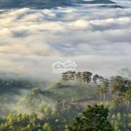 Đất Nghỉ Dưỡng View Đồi 2,9 Triệu Một Mét- Ảnh 9
