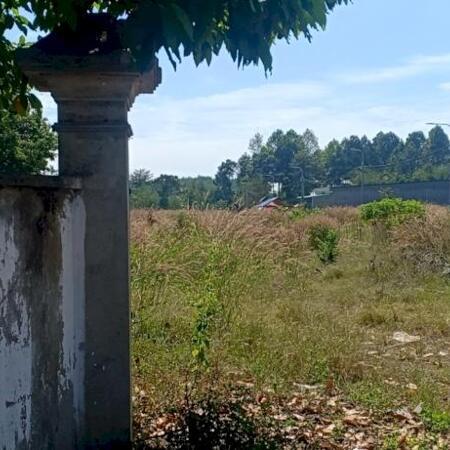 bán đất xã lộ 25 cạnh trường mầm non họa mi- Ảnh 2