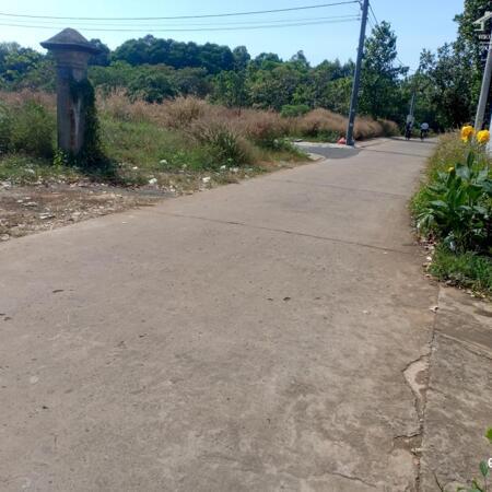 bán đất xã lộ 25 cạnh trường mầm non họa mi- Ảnh 6