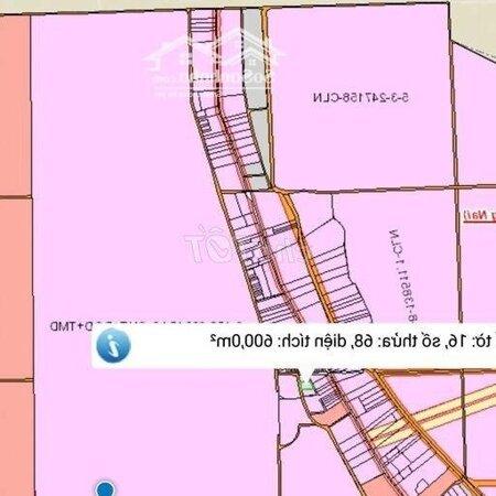 Đất Huyện Long Thành 600M² Shr Gần Kdt Gemskyworld- Ảnh 3