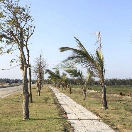 Đất Nền Sau Lưng Cocobay, Ven Biển Đà Nẵng- Ảnh 3
