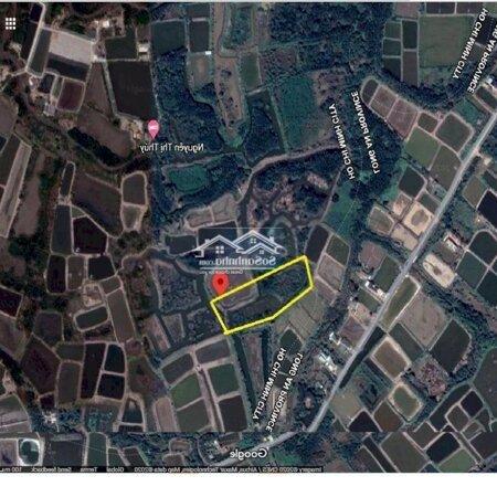 Cho Thuê Đất Nhà Bè 10 000M2- Ảnh 2