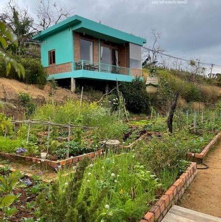 Bán đất tặng nhà gỗ đang kinh doanh homestay diện tích 1000m2 giá 4,5 tỷ- Ảnh 3