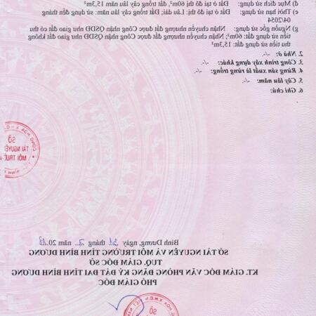 Bán đất 10x31 TC full giá 2,5 tỷ gần chợ bưng cầu phường Hiệp An- Ảnh 2