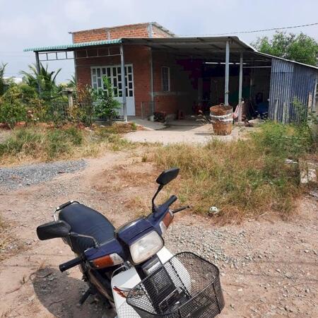 Cần bán 6.000m2 đất lúa (có thổ 600m2+nhà cấp 4) giá rẻ Thủ Thừa, tỉnh Long An.- Ảnh 4