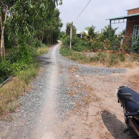 Cần bán 6.000m2 đất lúa (có thổ 600m2+nhà cấp 4) giá rẻ Thủ Thừa, tỉnh Long An.- Ảnh 2