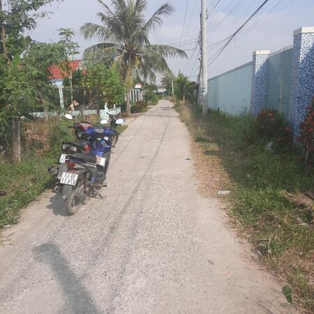 Cần bán 1600m2 (có 300m2 đất thổ) xã Nhị Thành giá rẻ- Ảnh 2