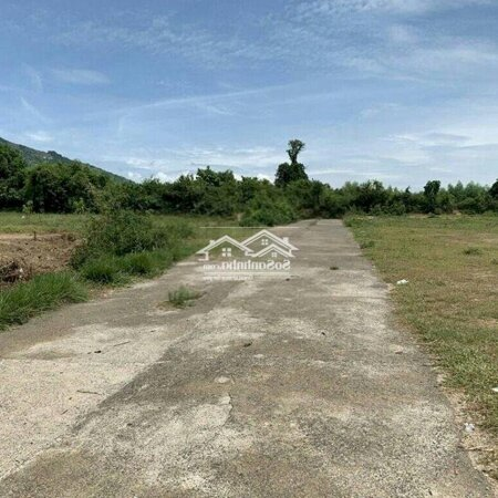 Bán Nhanh Lô Đất Đường Nhựa 12M Suối Tiên- Ảnh 2