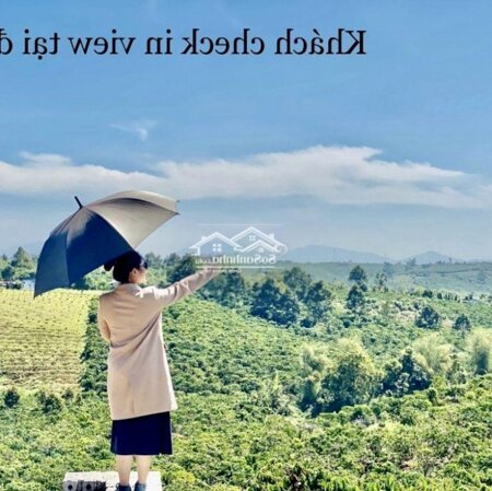 Đất Huyện Bảo Lâm 125M²- Ảnh 4