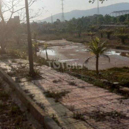 Bán Lô Góc Nền Biệt Thự Bảo Lộc Capital 12X27- Ảnh 4