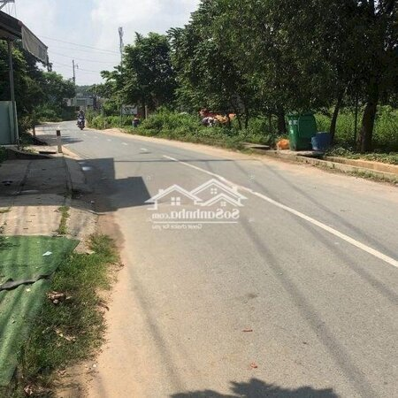 Xưởng Sx Gỗ Vĩnh Tân Uyên Bd 568 M- Ảnh 4