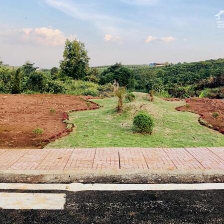 Bán gấp lô đất Full thổ cư , 600tr - ngay mặt tiền Lý Thường Kiệt - Bảo Lộc - Lâm Đồng- Ảnh 2
