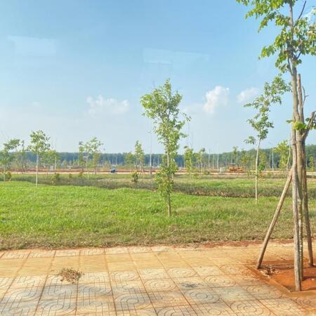 Chỉ từ 668 triệu sở hữu ngay đất nền Đak Lak, Khu đô thị Ân Phú- Ảnh 3