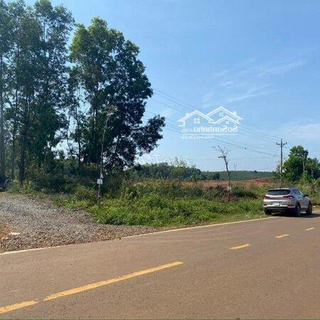 Đất Biệt Thự Trung Tâm Tp.bảo Lộc 570M2(18X31- Ảnh 1