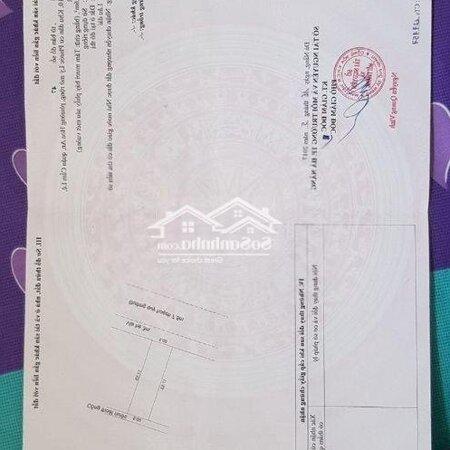 Bán Lô Đất Đường 7,5M Nguyễn Công Triều- Ảnh 3