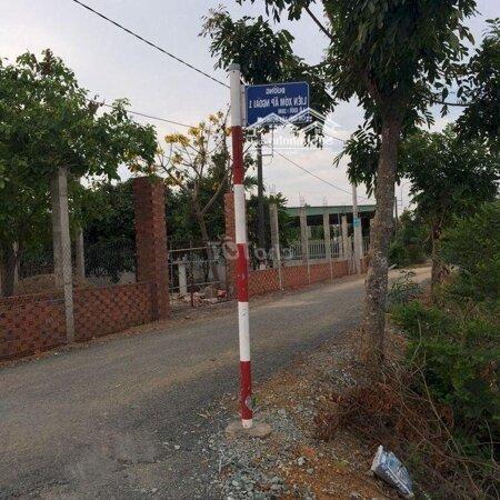 Cần Bán 3930M2 Đất Xã Mỷ Lộc Huyện Cần Giuộc- Ảnh 2