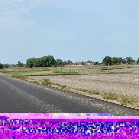Đất Huyện Đất Đỏ, Bà Rịa -Vũng Tàu 12000M² 2.1.Tỷ- Ảnh 3
