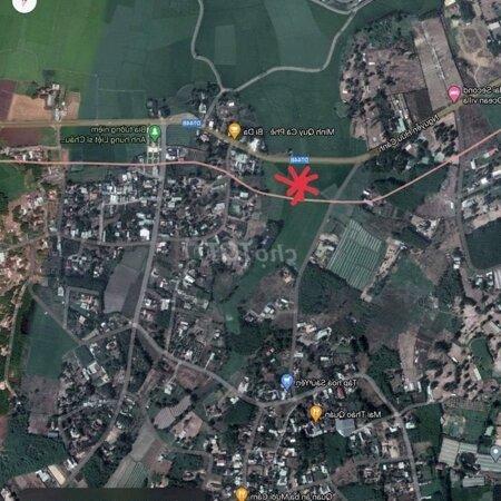Đất Huyện Đất Đỏ, Bà Rịa -Vũng Tàu 12000M² 2.1.Tỷ- Ảnh 4