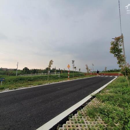 Bán đất thổ cư sổ riêng đồi chè Tâm Châu 669 Triệu, hạ tầng mới 100%- Ảnh 7
