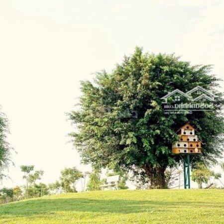 Hoa Viên Sala Garden 4,8M2 Sở Hữu Lâu Dài- Ảnh 2