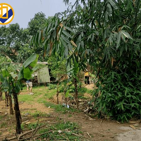 Bán lô đất 422m2 Tại Sơn Tây Hà Nội giá cả LH:0586229999 | Tiến Mai Dreamland |- Ảnh 1
