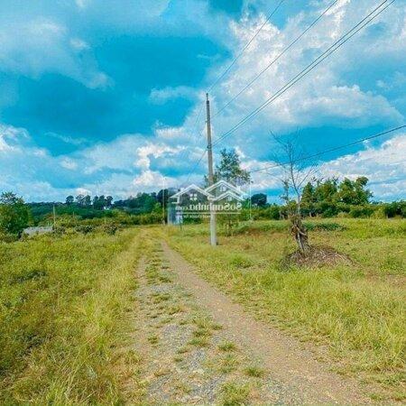 Đất Sân Bay Long Thành, Giá Siêu Tốt, Chính Chủ- Ảnh 2