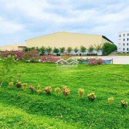 Đất Sân Bay Long Thành, Giá Siêu Tốt, Chính Chủ- Ảnh 6