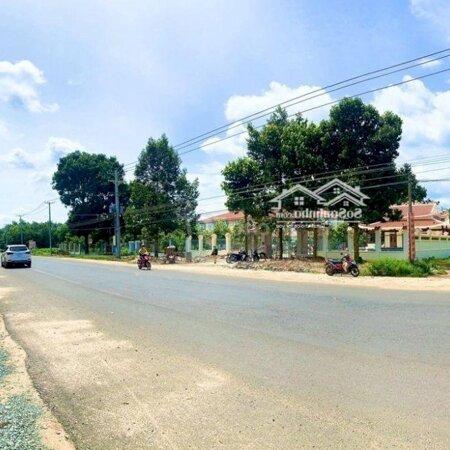 Đất Sân Bay Long Thành, Giá Siêu Tốt, Chính Chủ- Ảnh 3